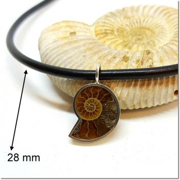 Anhänger Ammonit mit handgeabeiteter Silberfassung (250209)
